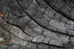 Fondo abstracto de madera de la quemadura Fotos de archivo libres de regalías