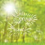 Fondo abstracto del bosque de los árboles del tiempo de primavera libre illustration