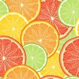 Fondo abstracto del color del vector con los agrios Imágenes de archivo libres de regalías