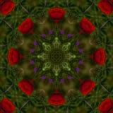 fondo abstracto del estampado de flores de un caleidoscopio Fotos de archivo
