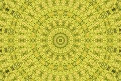 Fondo abstracto del fractal: espárrago Imagen de archivo