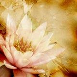 Fondo abstracto del grunge con el modelo floral Imagen de archivo