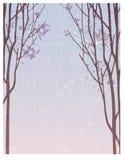 Fondo abstracto del invierno Fotos de archivo
