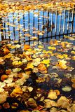 Fondo abstracto del otoño Foto de archivo libre de regalías