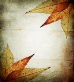 Fondo abstracto del otoño Fotos de archivo libres de regalías