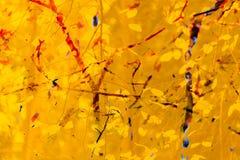 Fondo abstracto del otoño Ramas, hojas Amarillo rojo, anaranjado Fotografía de archivo libre de regalías