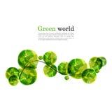 Fondo abstracto del vector con la rama y los elementos verdes claros para el diseño Fotos de archivo