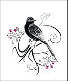 Fondo abstracto del vector con los pájaros Foto de archivo libre de regalías