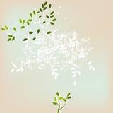 Fondo abstracto floral ilustración del vector