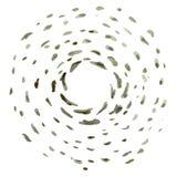 Fondo abstracto gris de la explosión del sol Foto de archivo libre de regalías