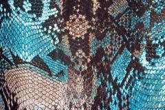 Fondo abstracto, piel de serpiente de imitación Imagenes de archivo