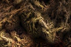 Fondo abstracto. Textura arrugada fractal Foto de archivo