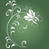 Fondo abstracto verde Fotografía de archivo libre de regalías