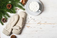 Fondo accogliente di inverno la tazza di cacao con la caramella gommosa e molle, i guanti e l'abete si ramifica Fotografia Stock Libera da Diritti