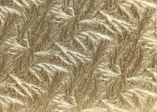 Fondo afiligranado metálico de la hoja de oro Foto de archivo libre de regalías