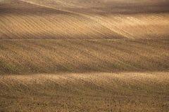 Fondo agricolo arato del campo Immagine Stock