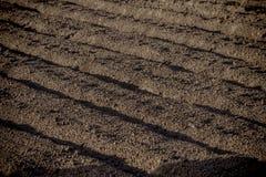 Fondo agricolo dei solchi recentemente arati del campo pronti per Immagini Stock