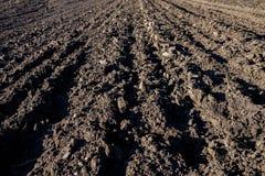 Fondo agricolo dei solchi recentemente arati del campo pronti per i nuovi raccolti Fuoco vicino fotografia stock libera da diritti