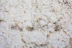 Fondo agrietado de la pared de piedra Foto de archivo libre de regalías