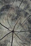 Fondo agrietado de madera vieja Fotos de archivo