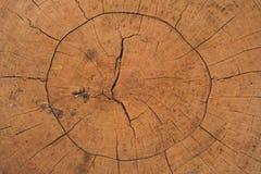 Fondo agrietado del círculo de madera Imágenes de archivo libres de regalías