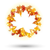 Fondo aislado circular del concepto de Autumn Frame Fotografía de archivo