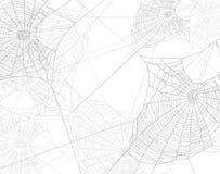 Fondo aislado del vector de la silueta del web de araña Fotografía de archivo