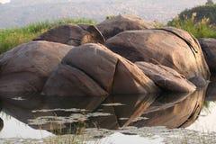 Fondo al aire libre hermoso de la ubicación de la naturaleza Fotografía de archivo