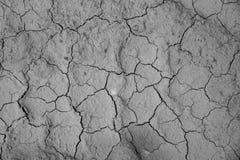 Fondo al suolo secco di struttura del suolo incrinato della terra Immagine Stock