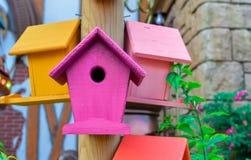 Fondo all'aperto del primo piano multicolore dei nidi per deporre le uova fotografie stock libere da diritti