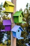 Fondo all'aperto del primo piano multicolore dei nidi per deporre le uova immagini stock