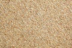 Fondo amarillento de la alfombra Imagen de archivo