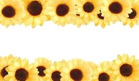 Fondo amarillo artificial de los girasoles Imagen de archivo libre de regalías