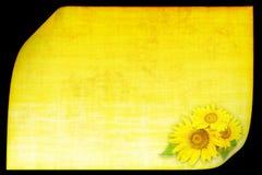 Fondo amarillo con el girasol Imagen de archivo libre de regalías