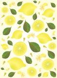Fondo amarillo del limón Foto de archivo
