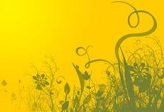 Fondo amarillo del resorte Foto de archivo libre de regalías