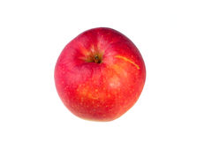 Fondo amarillo rojo del blanco del aislante de la manzana Fotografía de archivo