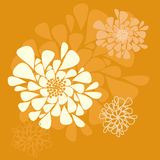 Fondo anaranjado de la flor Fotos de archivo libres de regalías