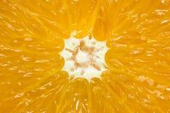 Fondo anaranjado de la fruta Imágenes de archivo libres de regalías