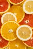Fondo anaranjado de la fruta con el limón y la naranja roja foto de archivo libre de regalías