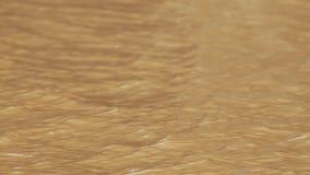 Fondo anaranjado de la onda Imágenes de archivo libres de regalías