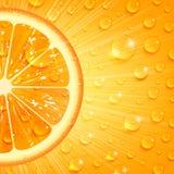 Fondo anaranjado jugoso imágenes de archivo libres de regalías