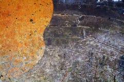 Fondo anaranjado y de madera Imagen de archivo libre de regalías