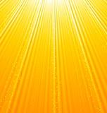 Fondo arancio astratto con i raggi luminosi del sole Immagini Stock Libere da Diritti