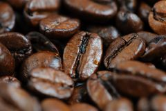 Fondo arrostito di macro dei chicchi di caffè Fotografia Stock