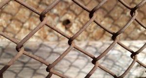 Fondo arrugginito della maglia del metallo Fotografia Stock