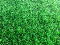 Fondo artificial de la hierba Imagen de archivo libre de regalías