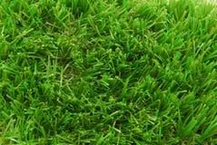 Fondo artificial del césped de la hierba fotos de archivo