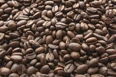 Fondo asado de los granos de caf? Granos de caf? en el caf? molido Visi?n superior imágenes de archivo libres de regalías