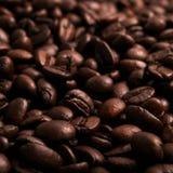 Fondo asado de los granos de café Fotos de archivo
